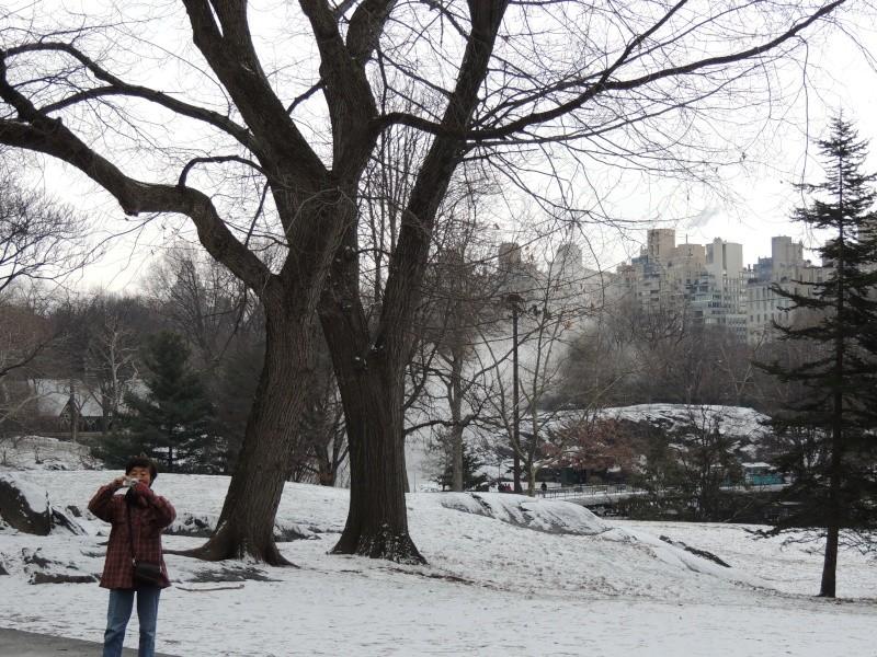 TR Montreal + New York du 19 Janvier au O6 Février 2O13 - Page 9 Dscn1771