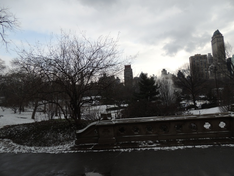 TR Montreal + New York du 19 Janvier au O6 Février 2O13 - Page 10 Dscn1772