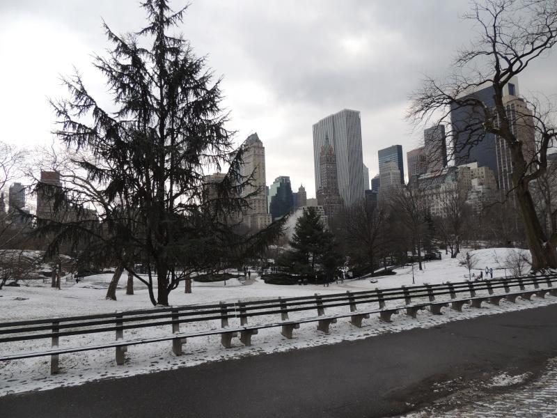 TR Montreal + New York du 19 Janvier au O6 Février 2O13 - Page 10 Dscn1773