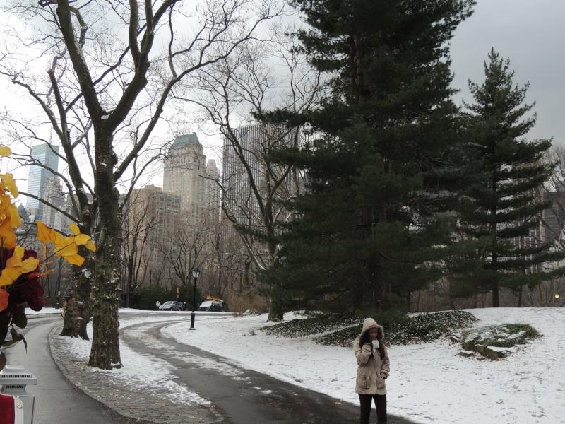 TR Montreal + New York du 19 Janvier au O6 Février 2O13 - Page 9 Dscn1775