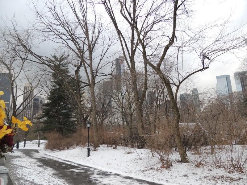 TR Montreal + New York du 19 Janvier au O6 Février 2O13 - Page 9 Dscn1776