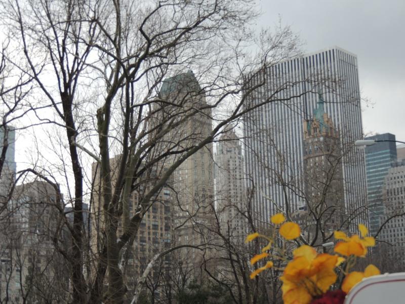 TR Montreal + New York du 19 Janvier au O6 Février 2O13 - Page 10 Dscn1777