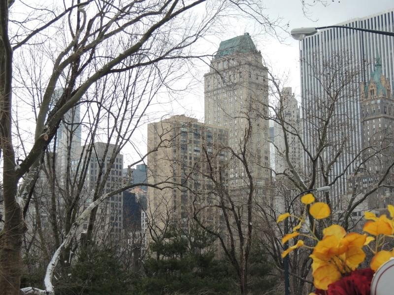 TR Montreal + New York du 19 Janvier au O6 Février 2O13 - Page 9 Dscn1778