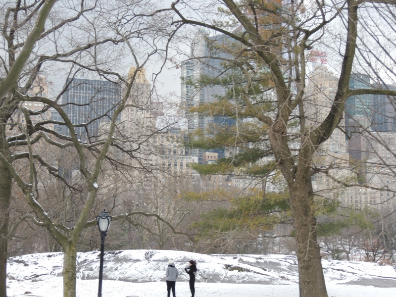 TR Montreal + New York du 19 Janvier au O6 Février 2O13 - Page 9 Dscn1779