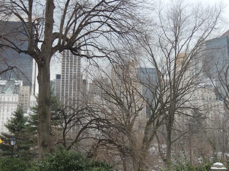 TR Montreal + New York du 19 Janvier au O6 Février 2O13 - Page 9 Dscn1780