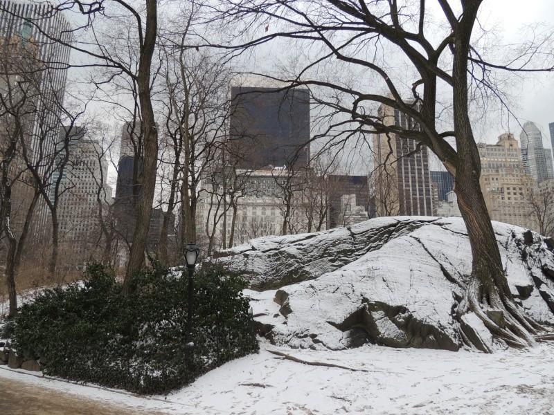 TR Montreal + New York du 19 Janvier au O6 Février 2O13 - Page 10 Dscn1781