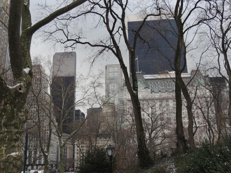 TR Montreal + New York du 19 Janvier au O6 Février 2O13 - Page 9 Dscn1782