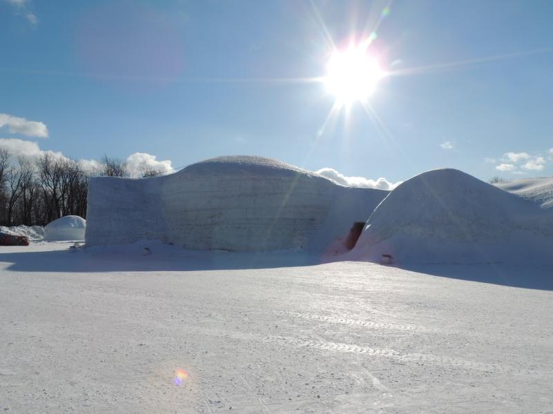 TR Montreal + New York du 19 Janvier au O6 Février 2O13 - Page 10 Dscn2037