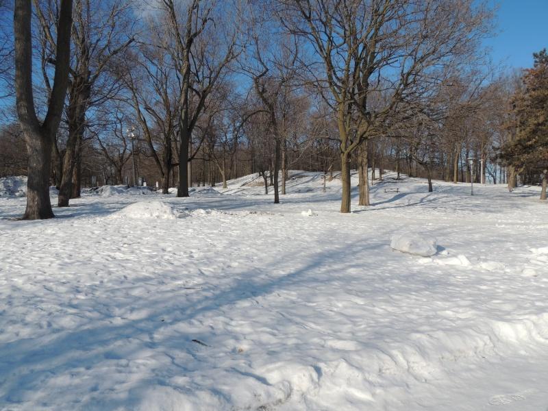 TR Montreal + New York du 19 Janvier au O6 Février 2O13 - Page 10 Dscn2041