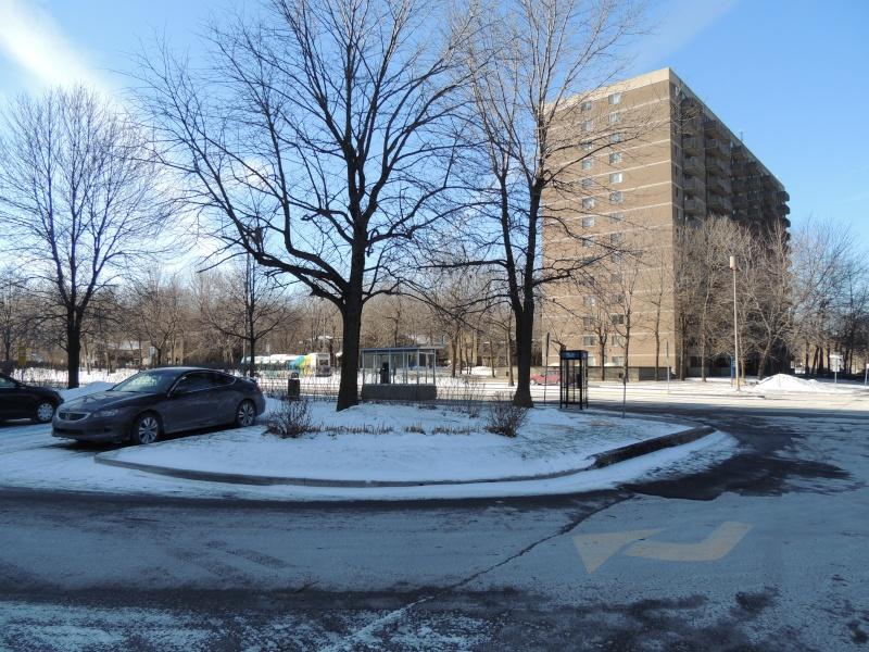 TR Montreal + New York du 19 Janvier au O6 Février 2O13 - Page 10 Dscn2045