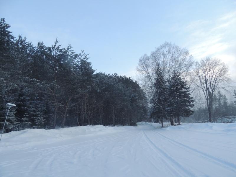 TR Montreal + New York du 19 Janvier au O6 Février 2O13 - Page 11 Dscn2115