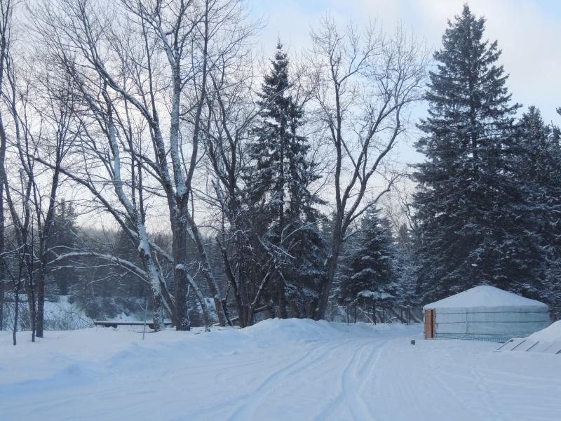 TR Montreal + New York du 19 Janvier au O6 Février 2O13 - Page 11 Dscn2118