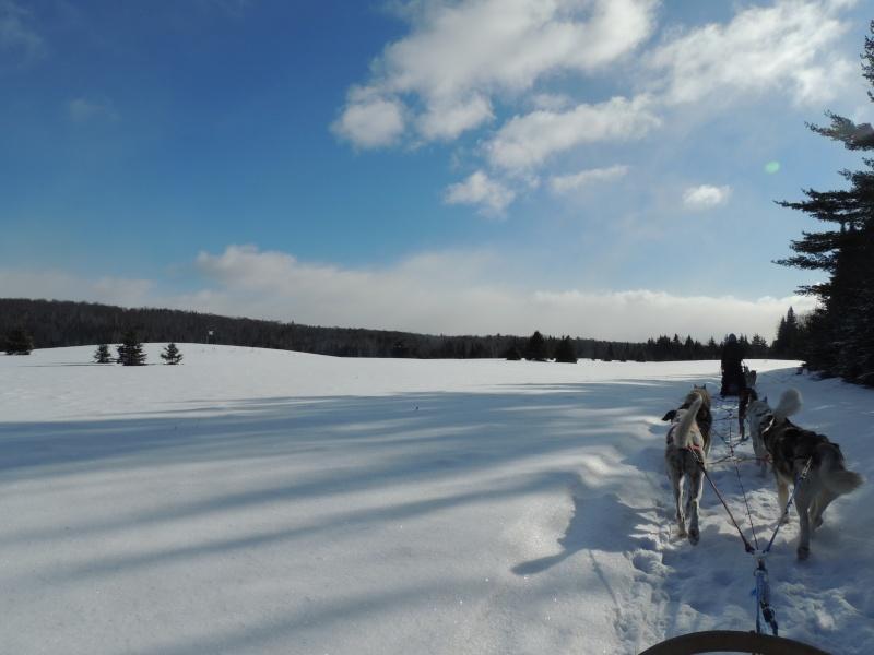 TR Montreal + New York du 19 Janvier au O6 Février 2O13 - Page 11 Dscn2128