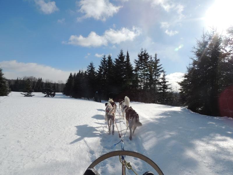 TR Montreal + New York du 19 Janvier au O6 Février 2O13 - Page 11 Dscn2130