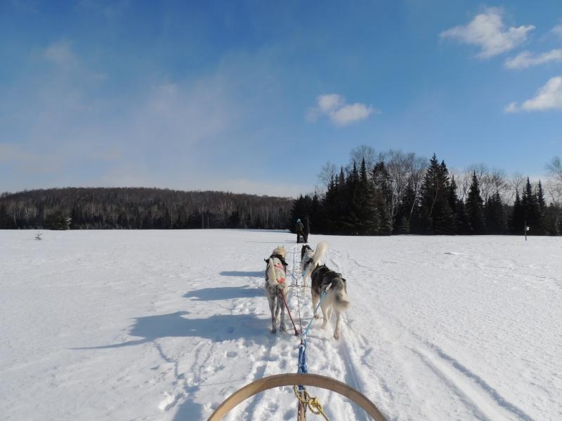TR Montreal + New York du 19 Janvier au O6 Février 2O13 - Page 11 Dscn2131