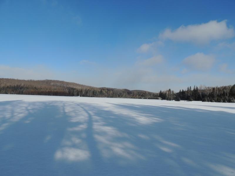 TR Montreal + New York du 19 Janvier au O6 Février 2O13 - Page 11 Dscn2132
