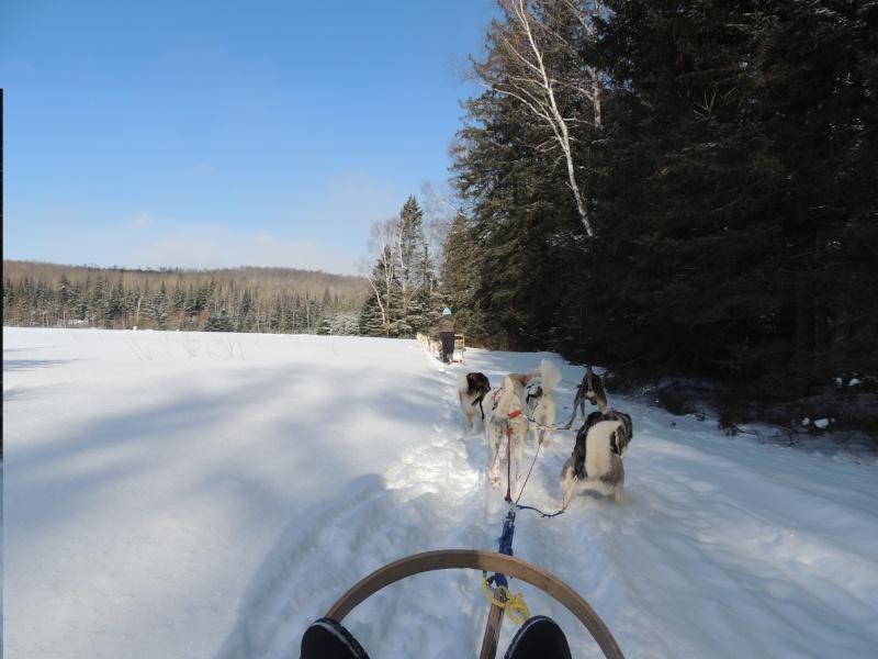 TR Montreal + New York du 19 Janvier au O6 Février 2O13 - Page 11 Dscn2133