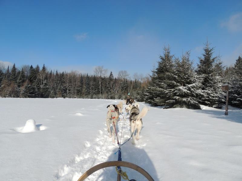TR Montreal + New York du 19 Janvier au O6 Février 2O13 - Page 11 Dscn2134
