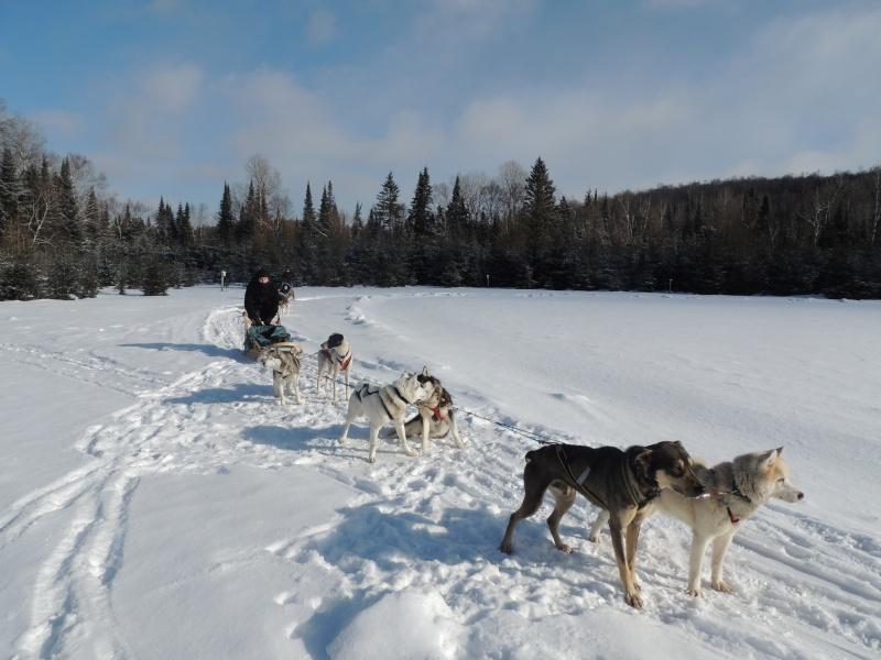 TR Montreal + New York du 19 Janvier au O6 Février 2O13 - Page 11 Dscn2145
