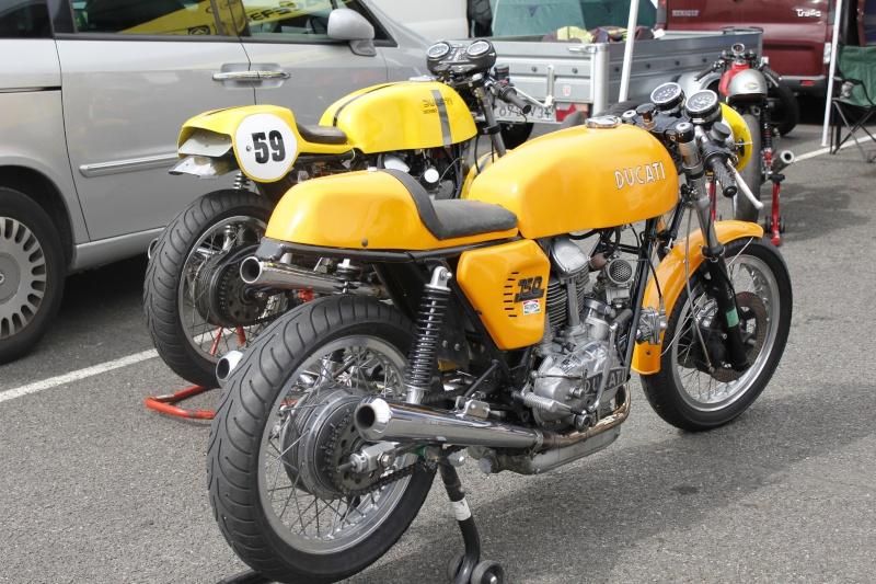 Ducat' _mg_7213