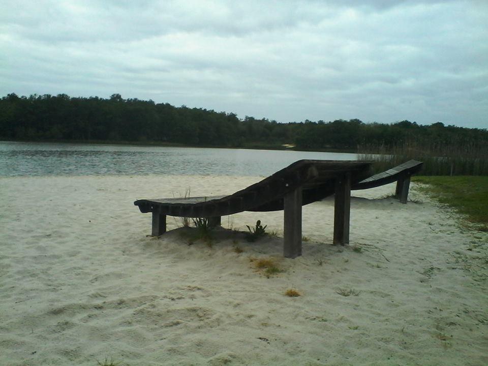 visite : 24 - (mussidan) étang de La Jemaye Lajema10