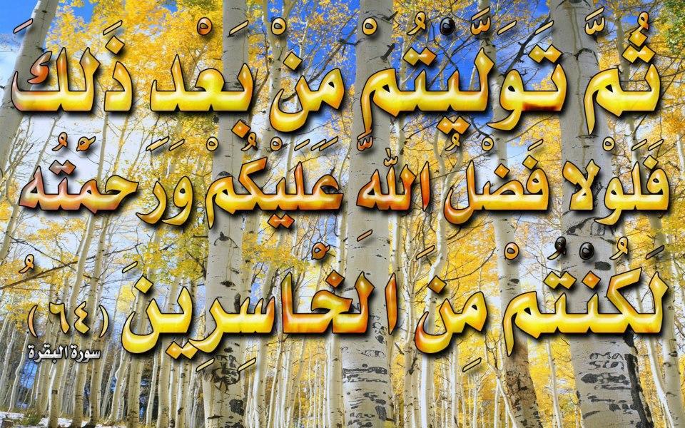 صور لآيات قرآنية كريمة مكتوبة أمام خلفية رائعة / الجزء الأول 26204610