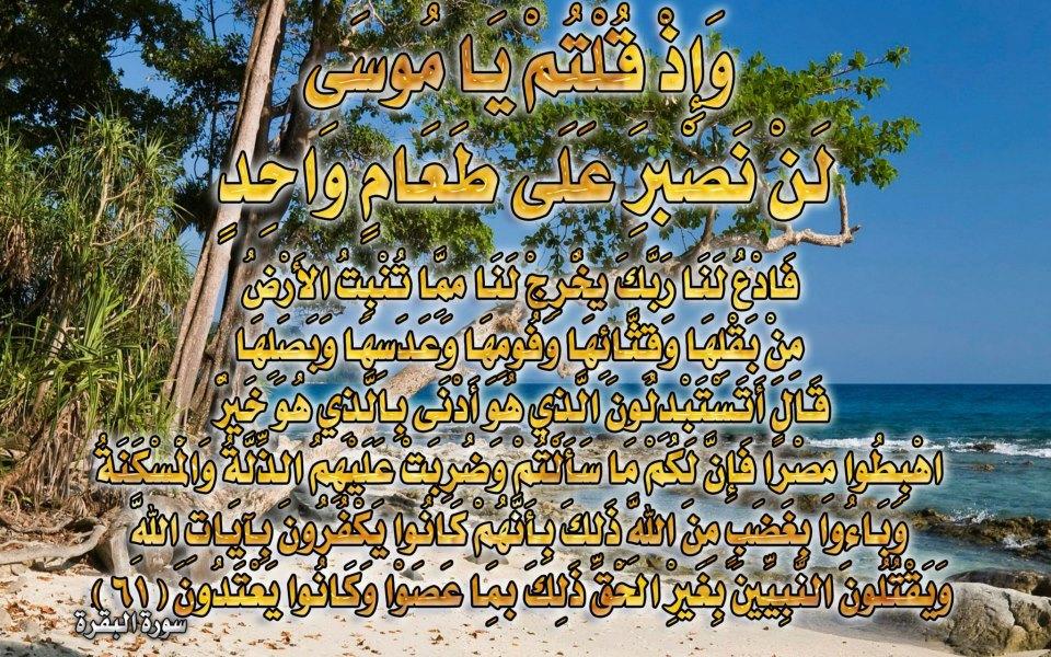 صور لآيات قرآنية كريمة مكتوبة أمام خلفية رائعة / الجزء الأول 28352610