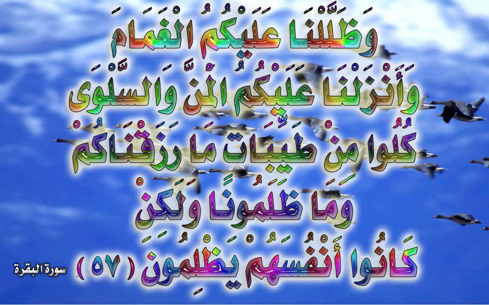 صور لآيات قرآنية كريمة مكتوبة أمام خلفية رائعة / الجزء الأول 29993210