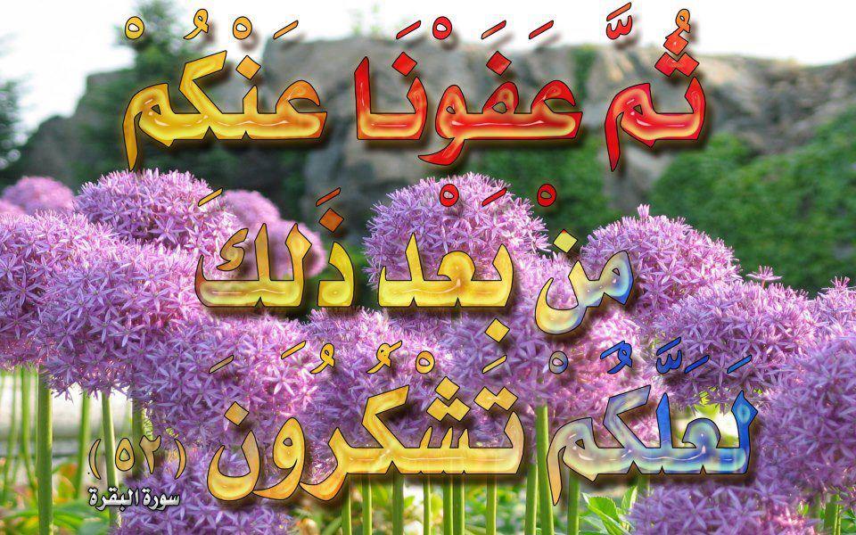صور لآيات قرآنية كريمة مكتوبة أمام خلفية رائعة / الجزء الثالث 48375011