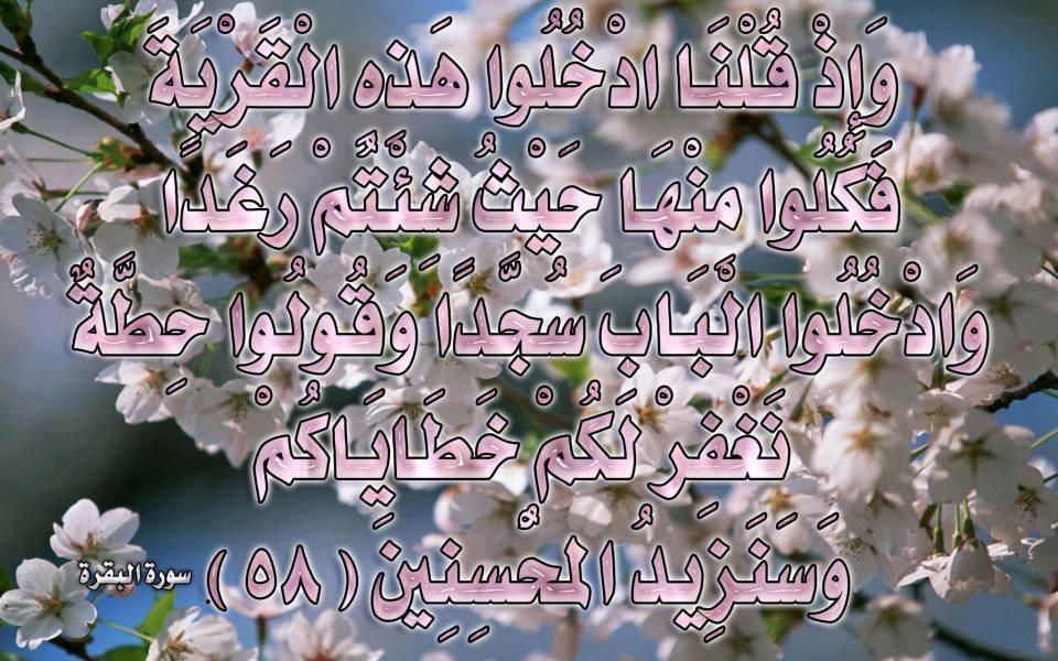 صور لآيات قرآنية كريمة مكتوبة أمام خلفية رائعة / الجزء الرابع 56267010