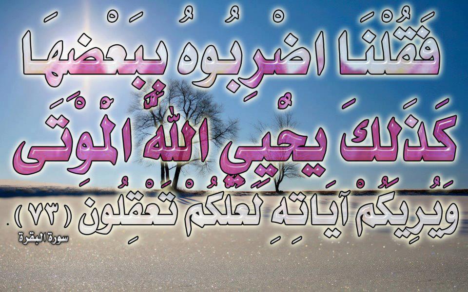صور لآيات قرآنية كريمة مكتوبة أمام خلفية رائعة / الجزء الخامس 57778111