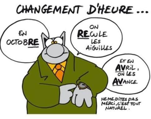 BD : LE CHAT  Chat_e10