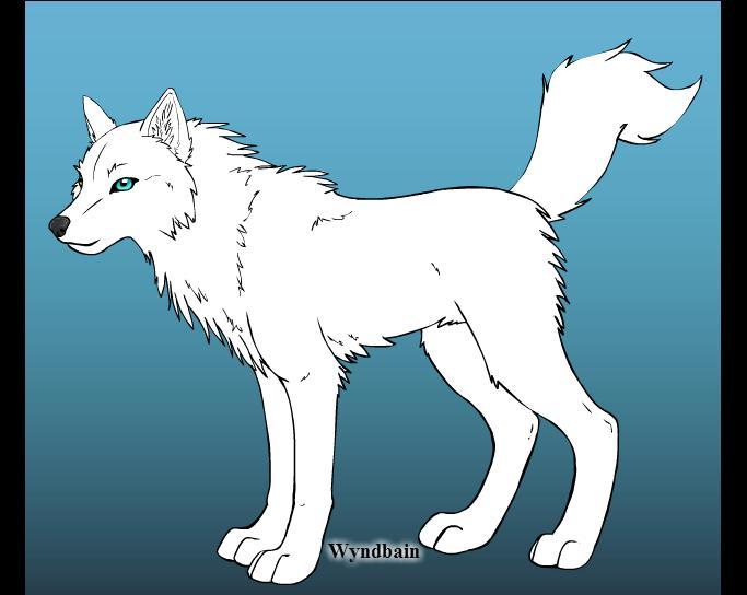 Los lobos Sayad10