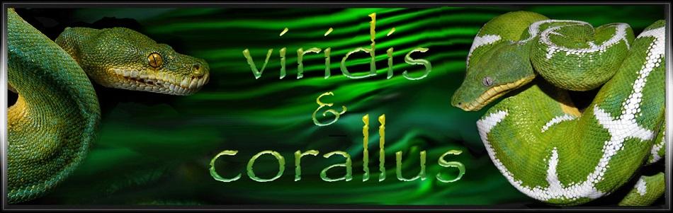 Viridis et Corallus forum