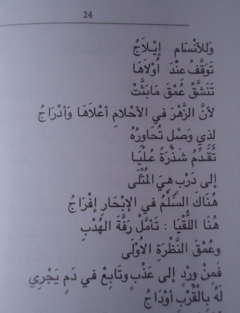 مسارات : للدكتور اسماعيل حمد .. Dsc05613