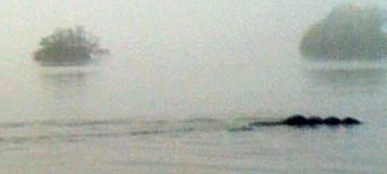 Cryptozoologie monstre lacustre créature inconnue forum serpent de mer nessie Bownessie Comté de Cumbrie england angleterre observations témoignages Tom Pickles Sarah Harrington Bowness-on-Windermere