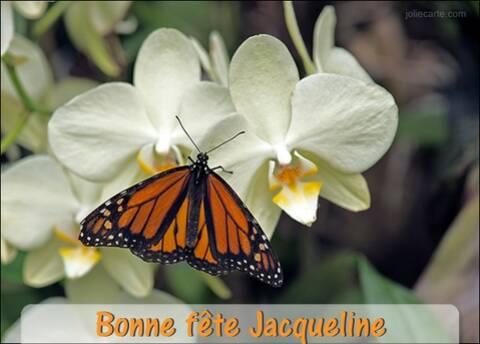"""Résultat de recherche d'images pour """"bonne fete jacqueline"""""""