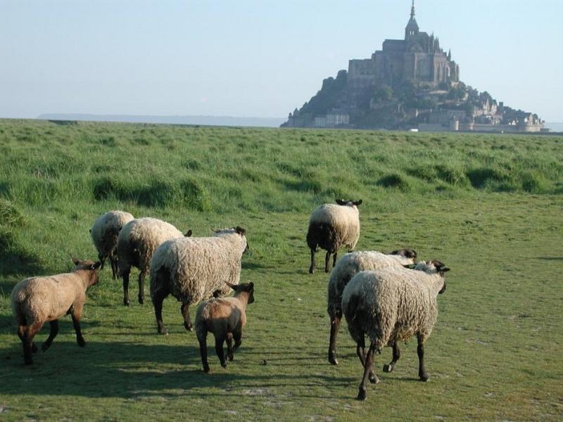 Il y a un an  on découvrait  le Mont St Michel Baie-d10
