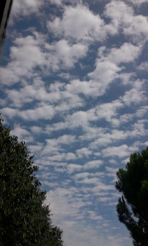 photos de nuages et arbres de Prairie Photo013