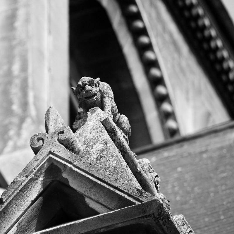 FIL ROUGE : Les gargouilles Img_4410