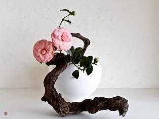 L'IKEBANA (art floral japonais) Ikeban11