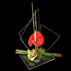 L'IKEBANA (art floral japonais) Ikeban12