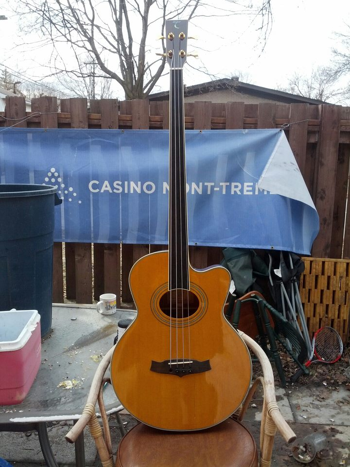 Tanglewood 4 String Fretless Acoustic Bass  Bass_210