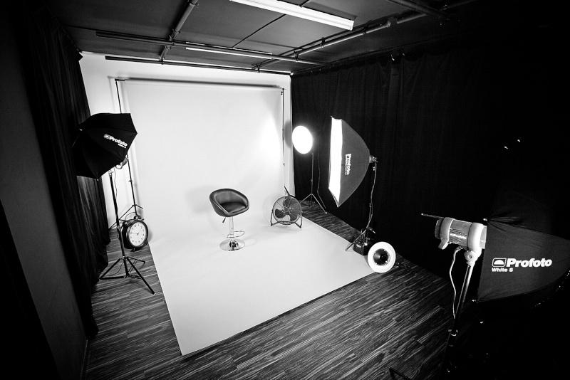 lyre glandulaire ou les Amours des fougères préhistoriques Studio10