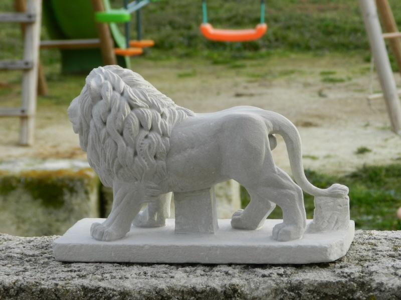 Lion Dscn4812