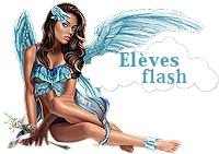 Elèves Flash