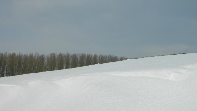 Balades dans la neige Dscn2910
