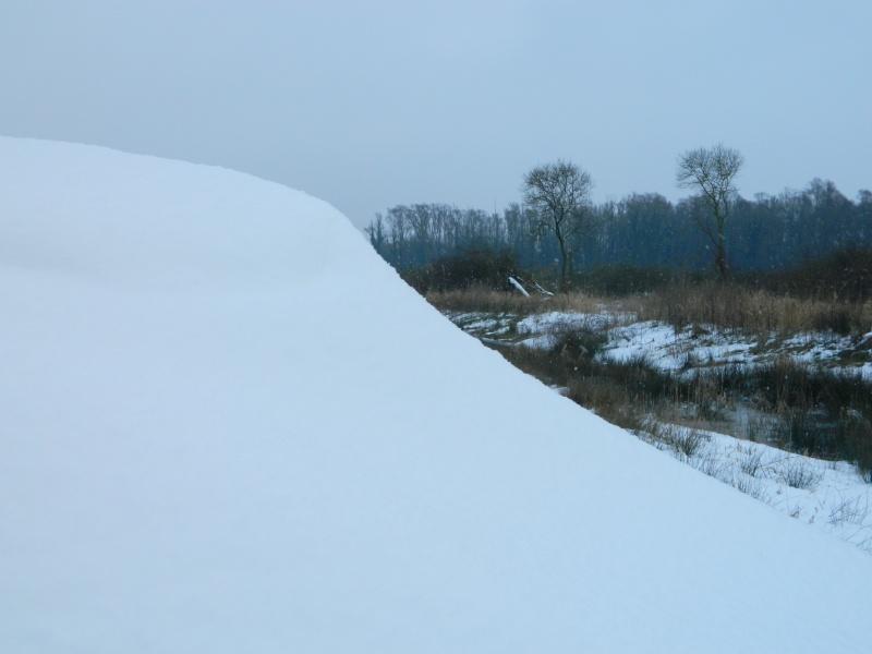 Balades dans la neige - Page 2 Dscn2916
