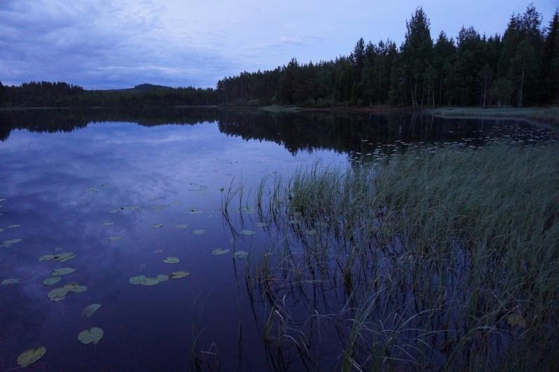 Sweden II - Le Retour - 210