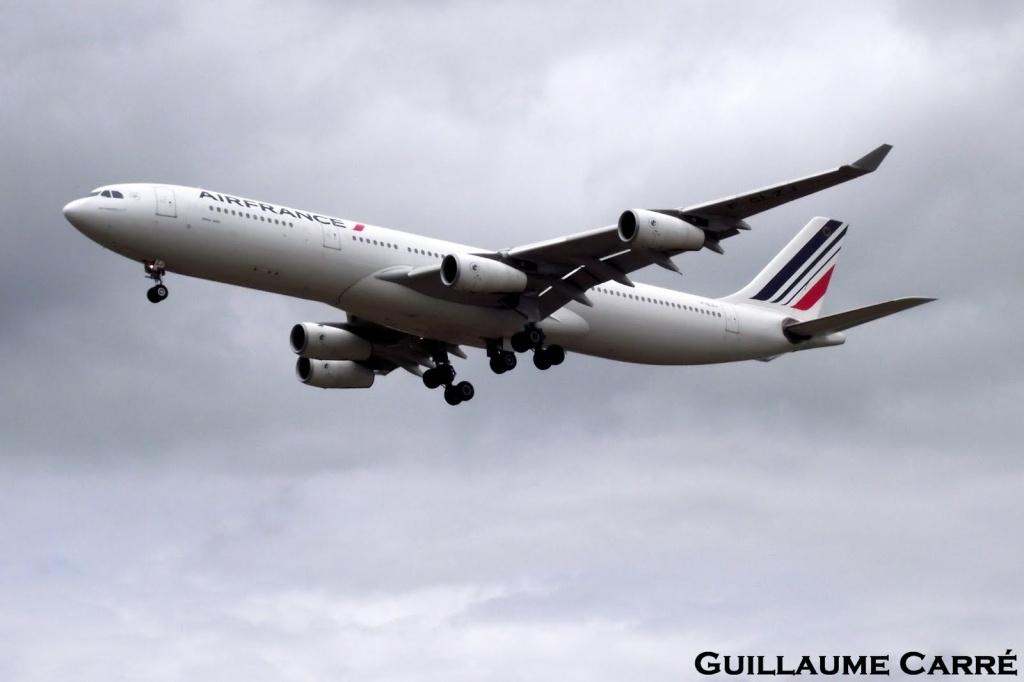Les exclusivités sur Bordeaux-Mérignac, les plus beaux avions Dscf4112